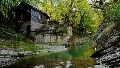 ЭКО гостиница-резиденция в стиле лесных домов