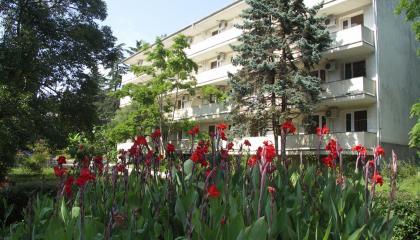 Санаторий в городе Сочи